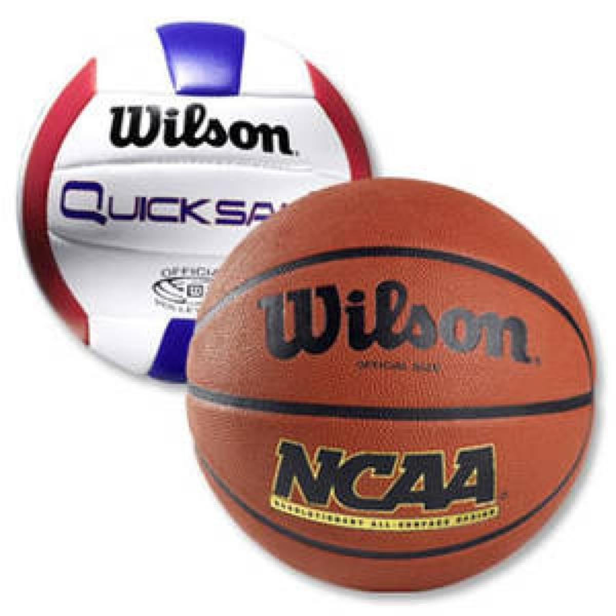 Image credit: http://www.discounto.de%2fAngebot%2fWilson-Basketball-oder-Volleyball-542012%2f/RK=0/RS=nEQ_..kU9F5kl7_7xDcIlOEjCcQ-