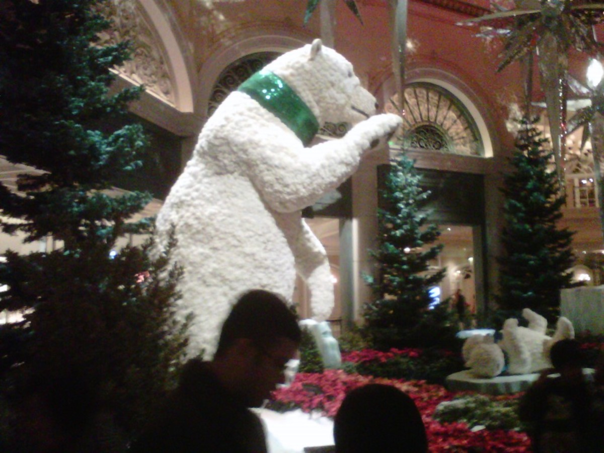 Polar Bear and Bellagio Christmas: Beautiful gardens transformed for the holiday season