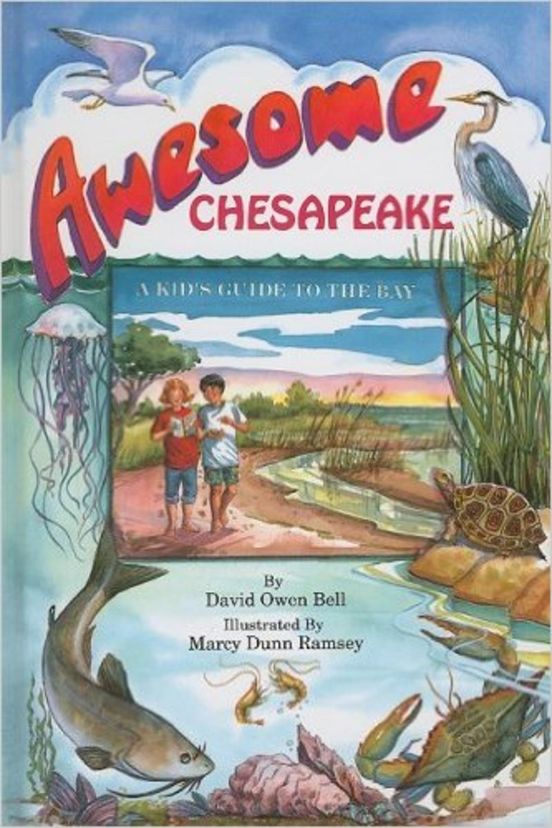 Awesome Chesapeake: A Kid's Guide to the Bay by David Owen Bell