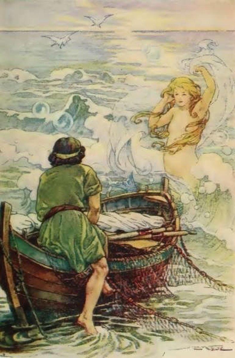 Illustration: C. M. Burd