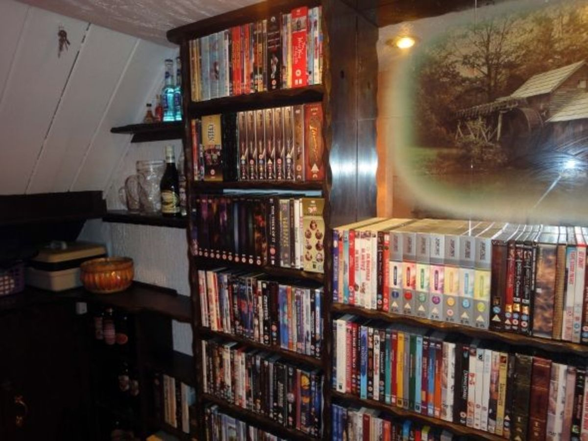Hewn bookcase for DVDs and CDs