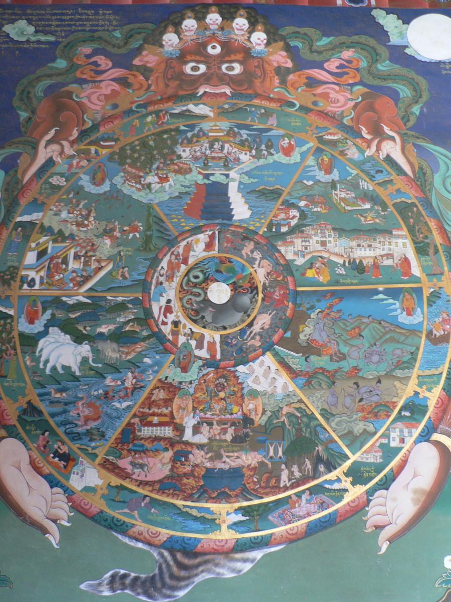 Wheel of Life by Stephen Shephard