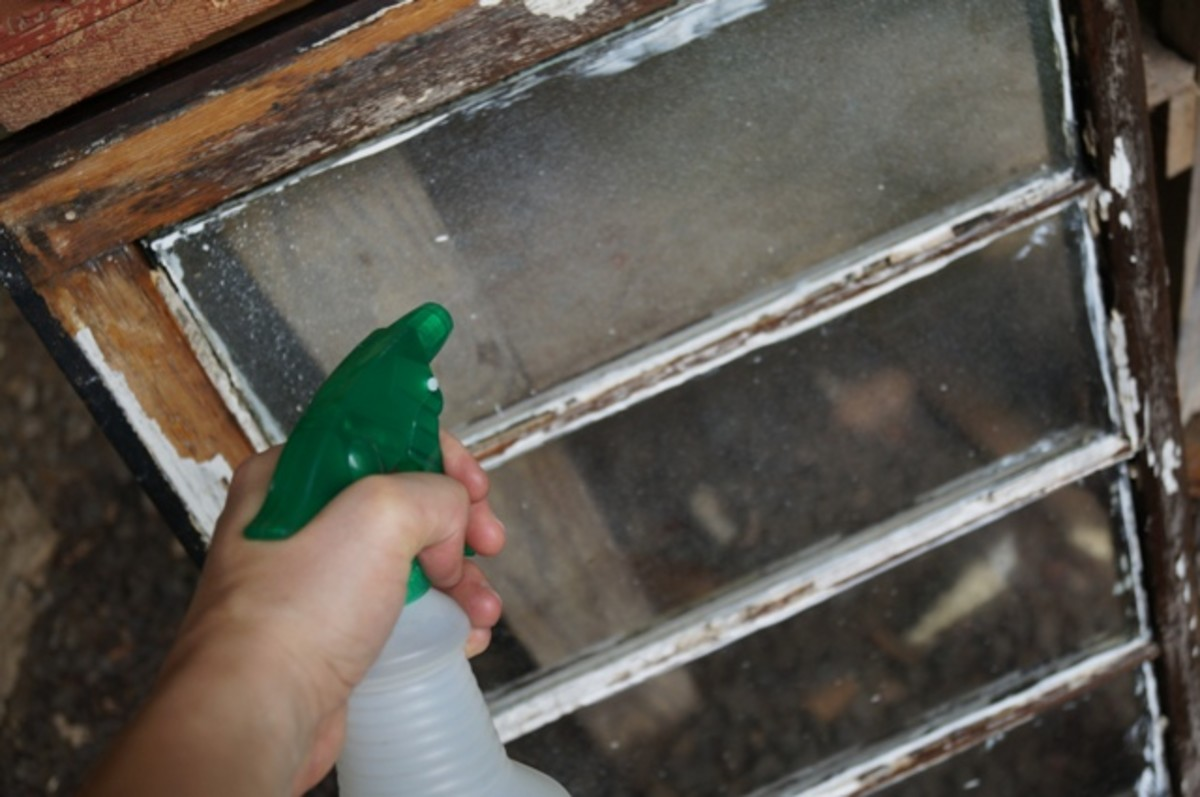 Clean the window, if necessary, with a 1:1 solution of water and white distilled vinegar.  A palette knife or razor blade will get old paint particles off, as well.