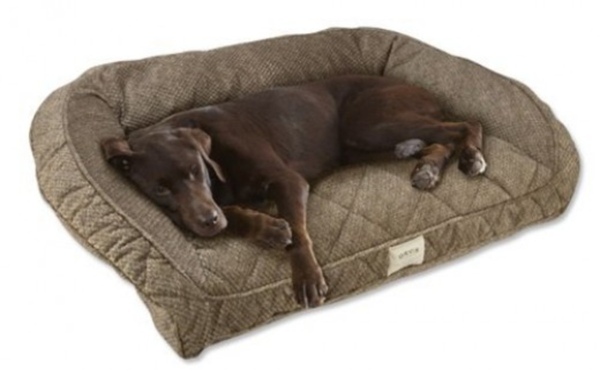 Deep Dish Dog Bed with Bolster