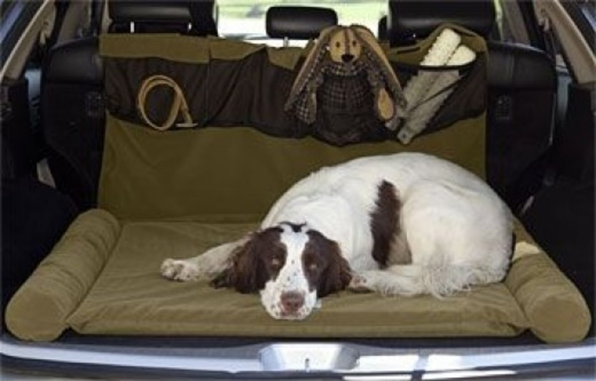 large travel bolster pet bed
