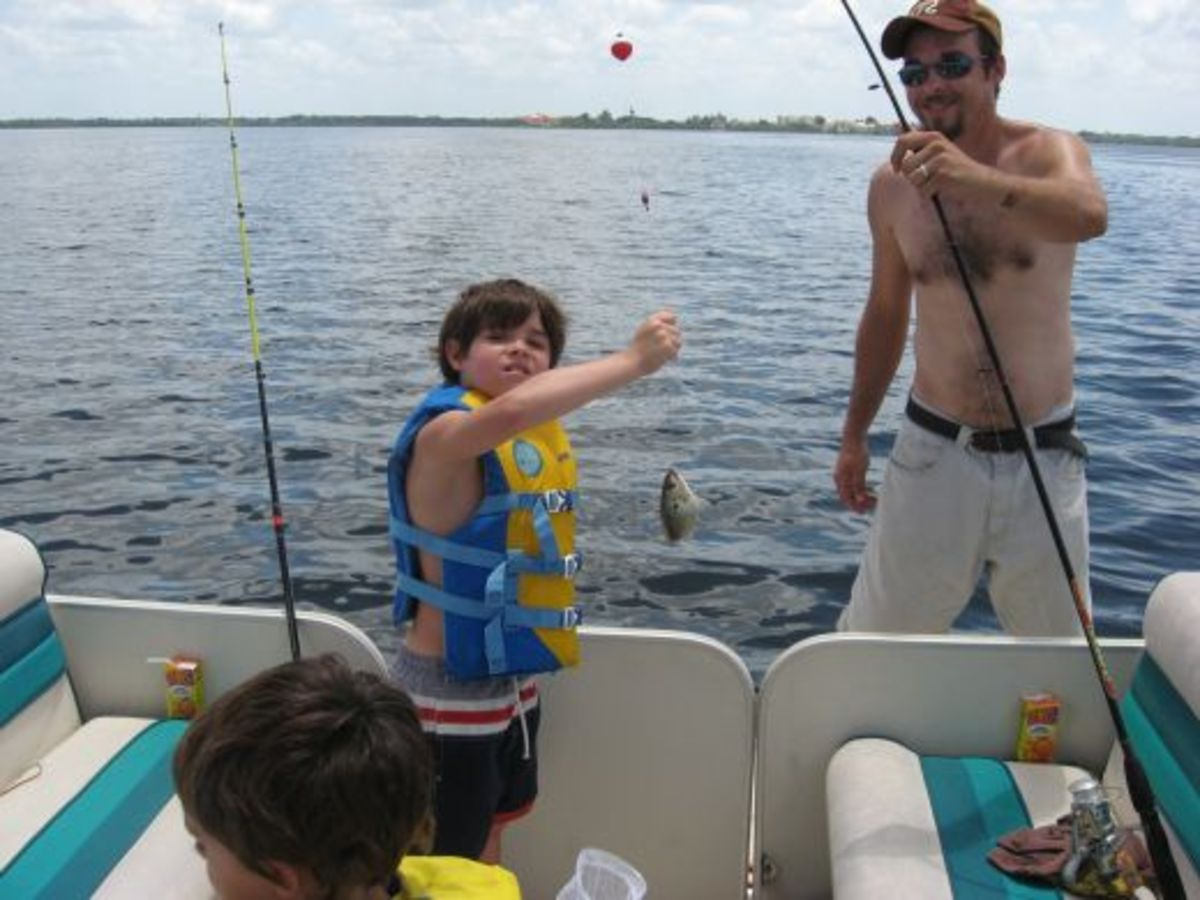 Fishing Bait - the grandkids often catch ours
