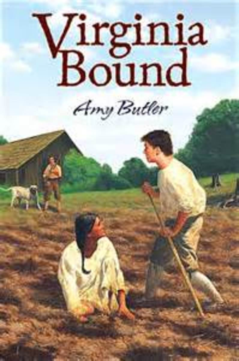 Virginia Bound by Amy Butler