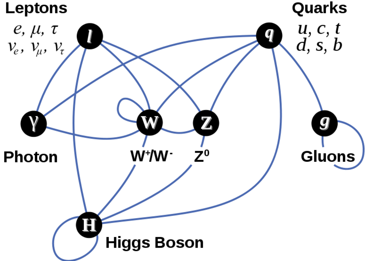 A diagram summarizing the tree-level interactions between elementary particles described in the Standard Model. Vertices (darkened circles) represent types of particles, and edges (blue arcs) connecting them represent interactions that can take place