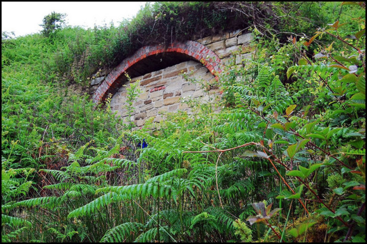 This is the closed tunnel mouth where ironstone was brought through from Grinkle Mine for shipment to Newcastle-upon-Tyne. Port Mulgrave was originally named Port Rosedale