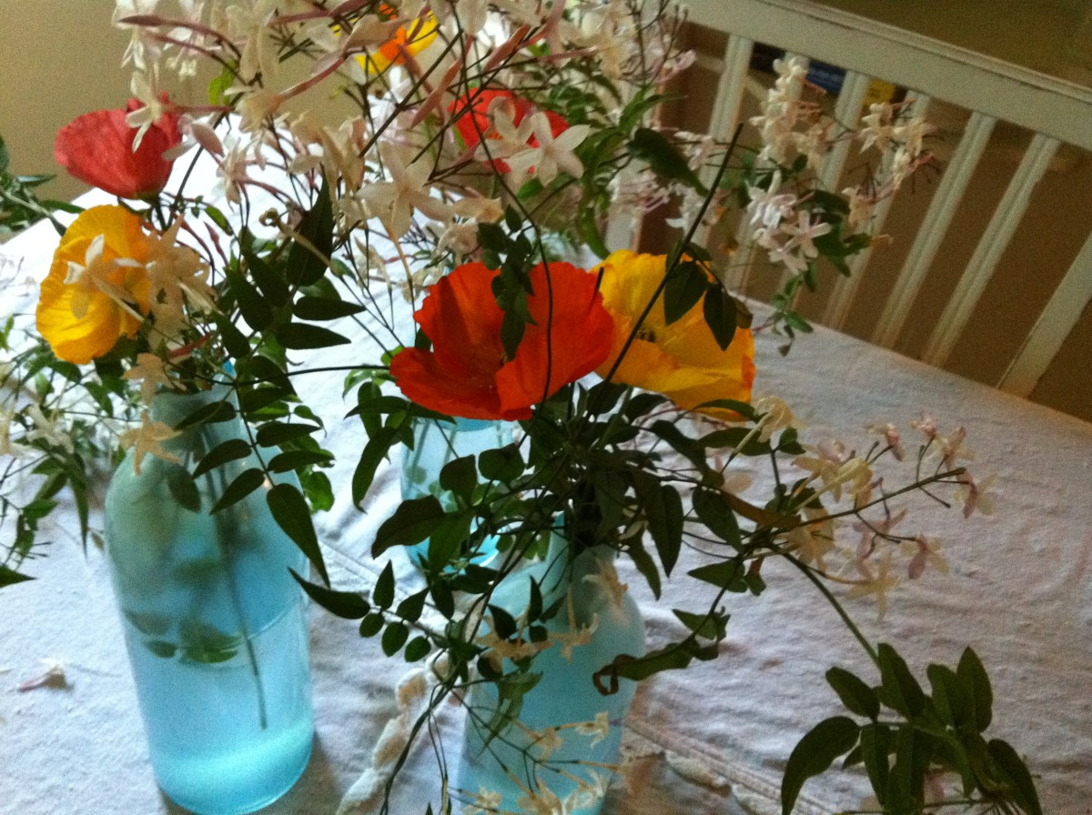 Fresh picked flowers in a conservatory.  The vases are old milk bottles that are tinged with blue