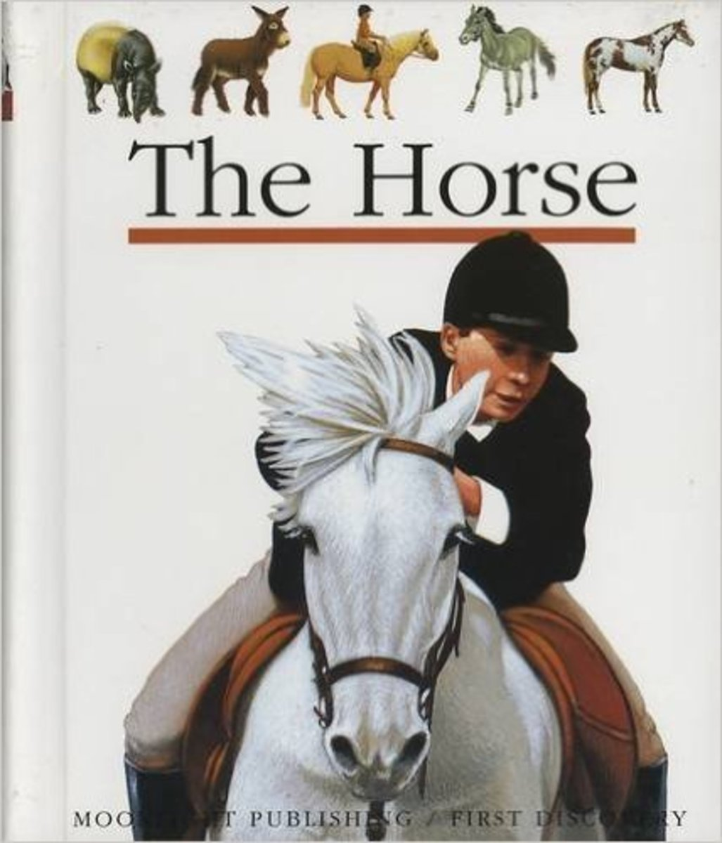 The Horse (First Discovery Series) by Henri Galeron