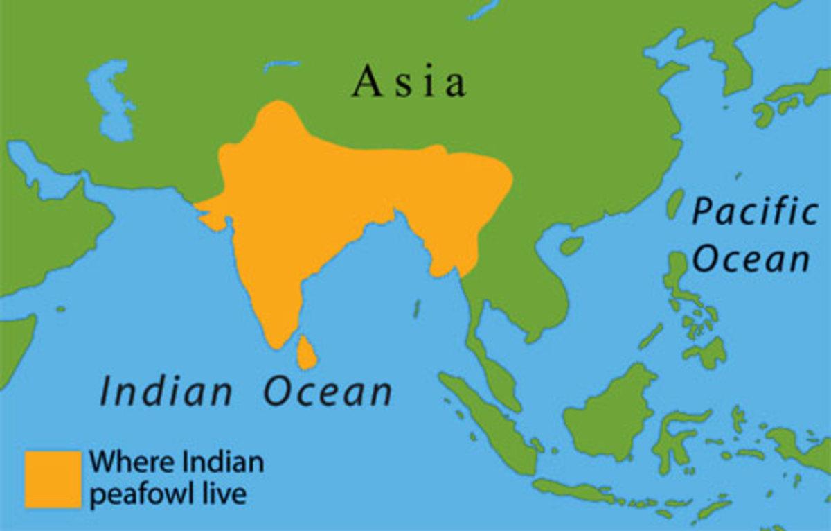 Peafowl range in India