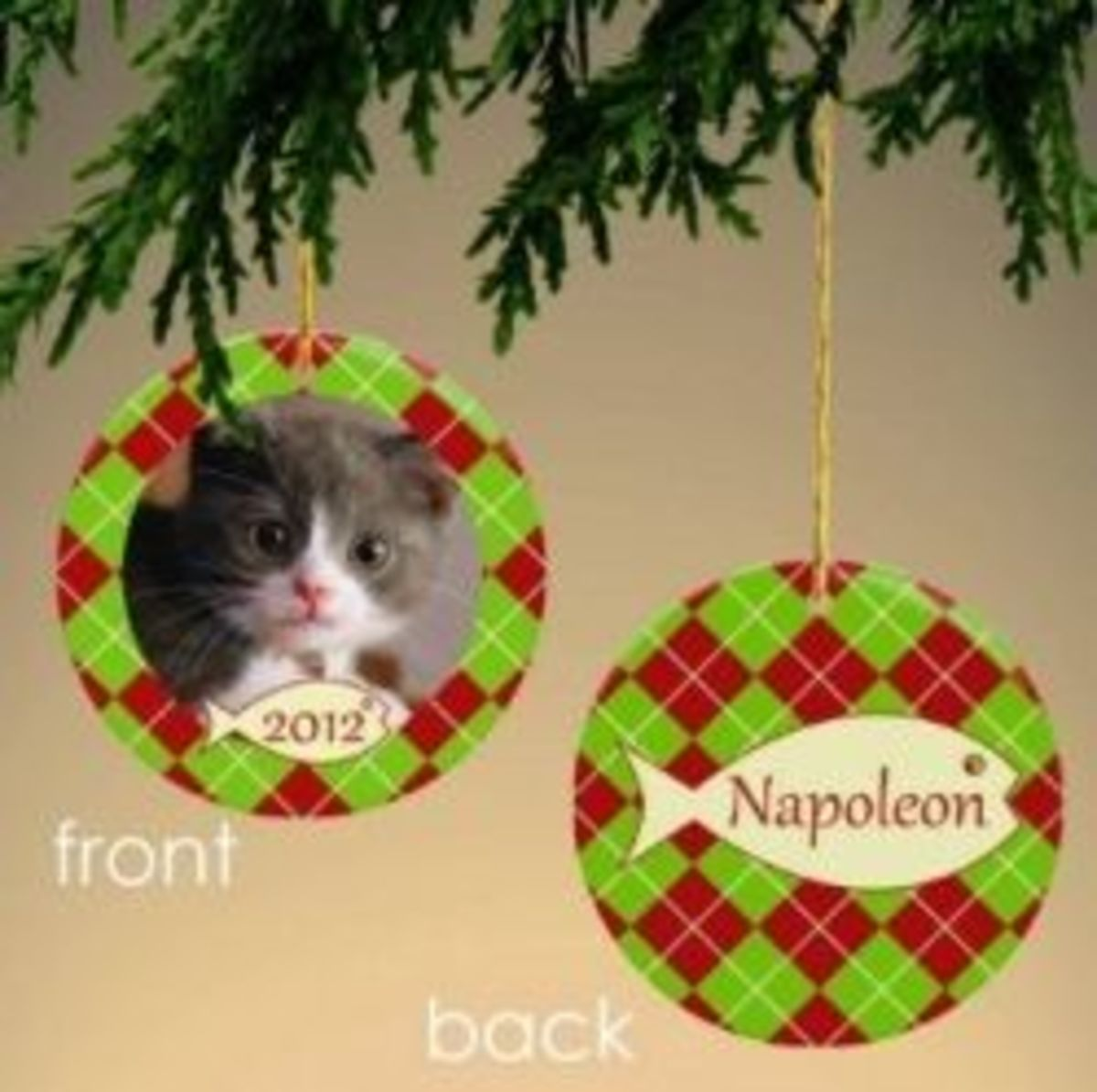 Personalize Your Cat Ornament With A Picture!   Add a photo of your cat to one side and add your cat's name to the other side, plus you can also add the year!  This image is from Amazon and you can find the personalized cat ornament on this page.