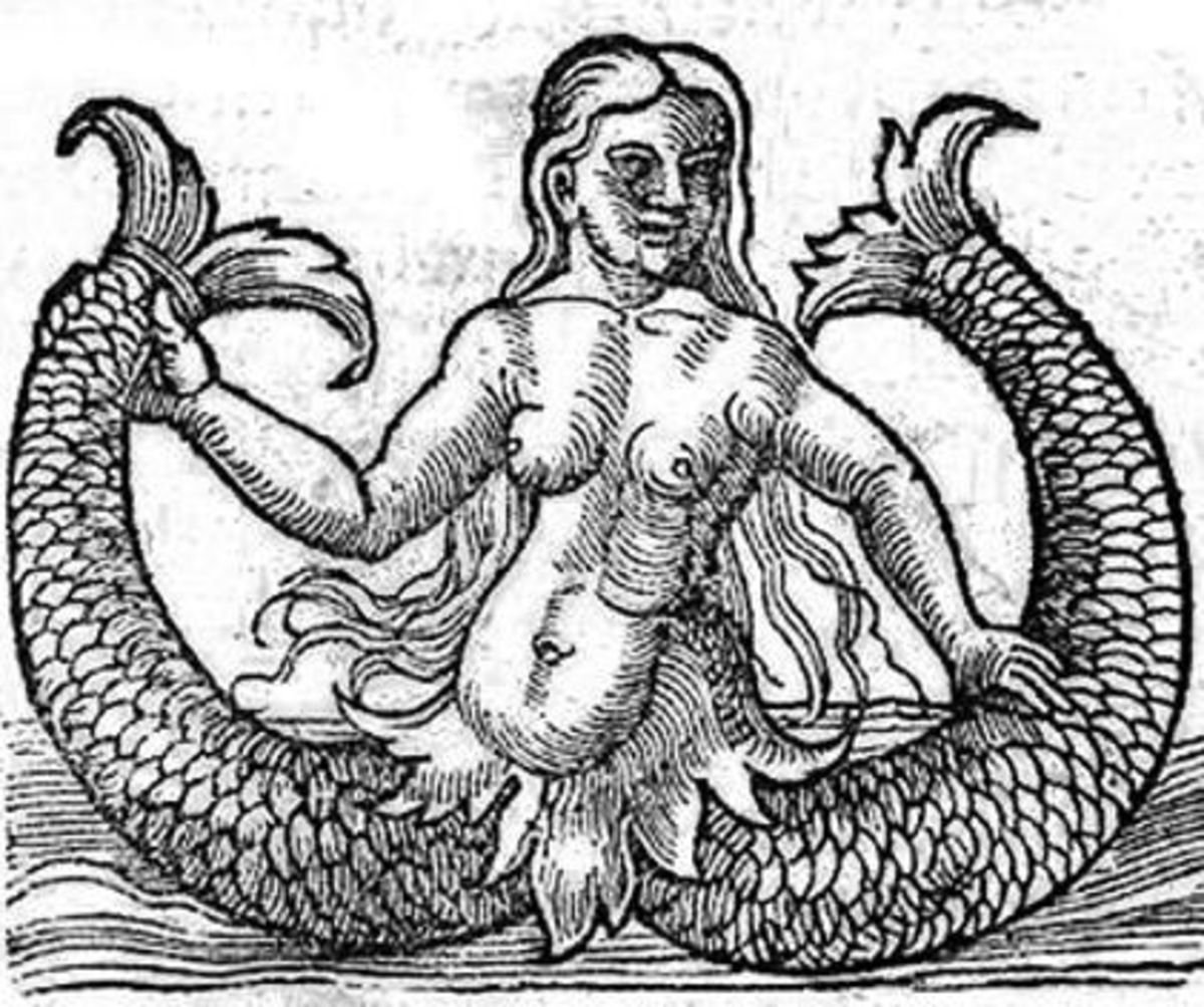 The Two Tailed Mermaid