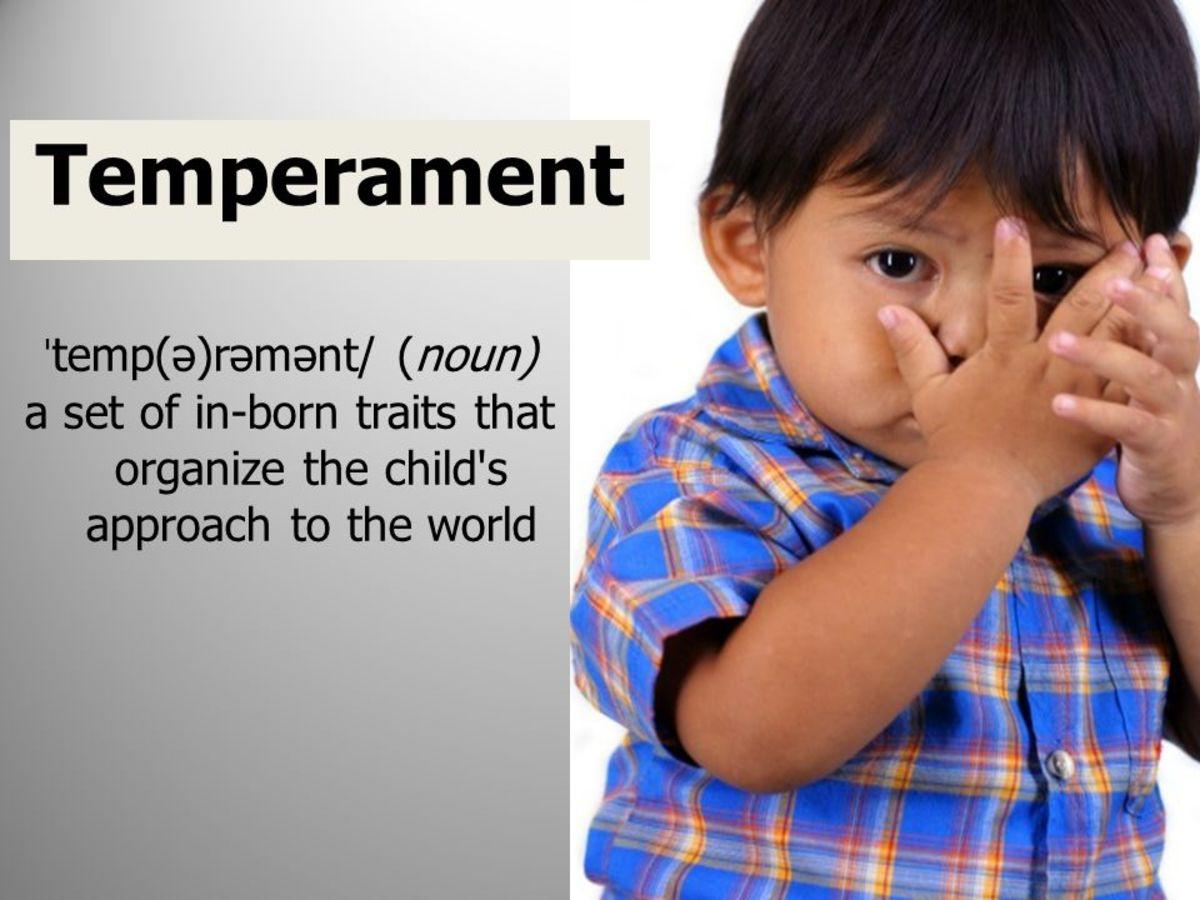 A Child's temperament defined