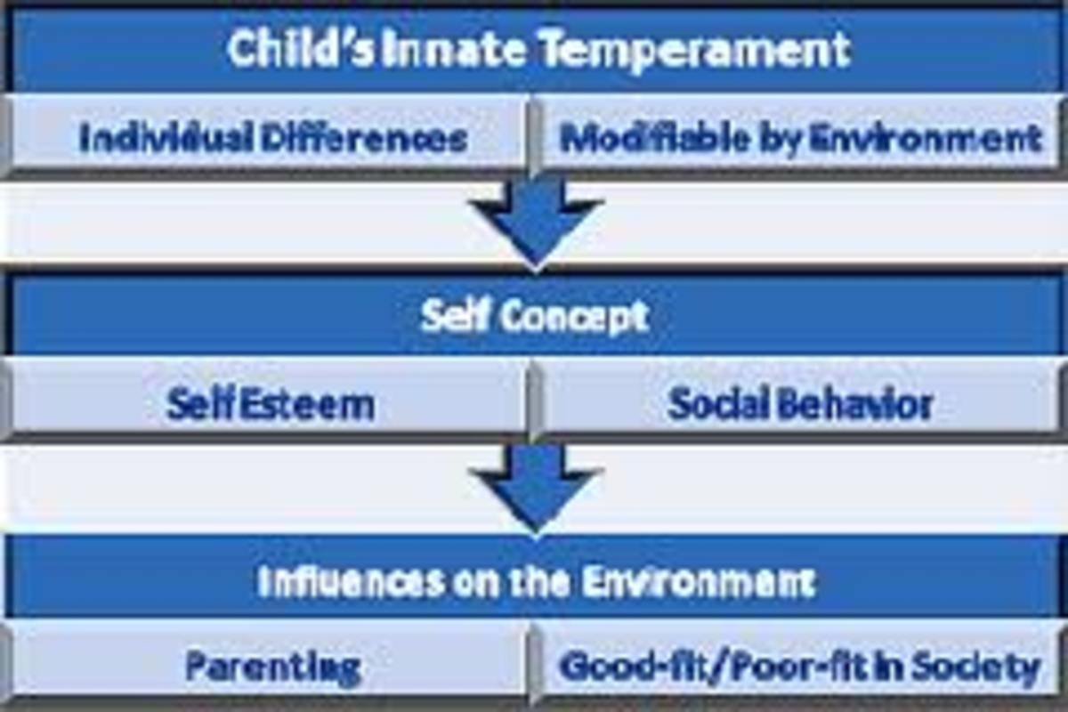 Temperament is a child's innate manner of thinking, behaving, and reacting.