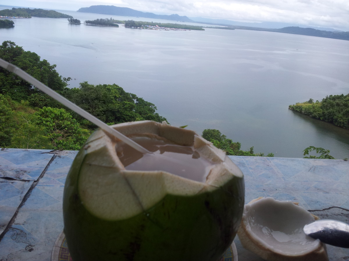 Lunch with coconut water and meat - West Papua