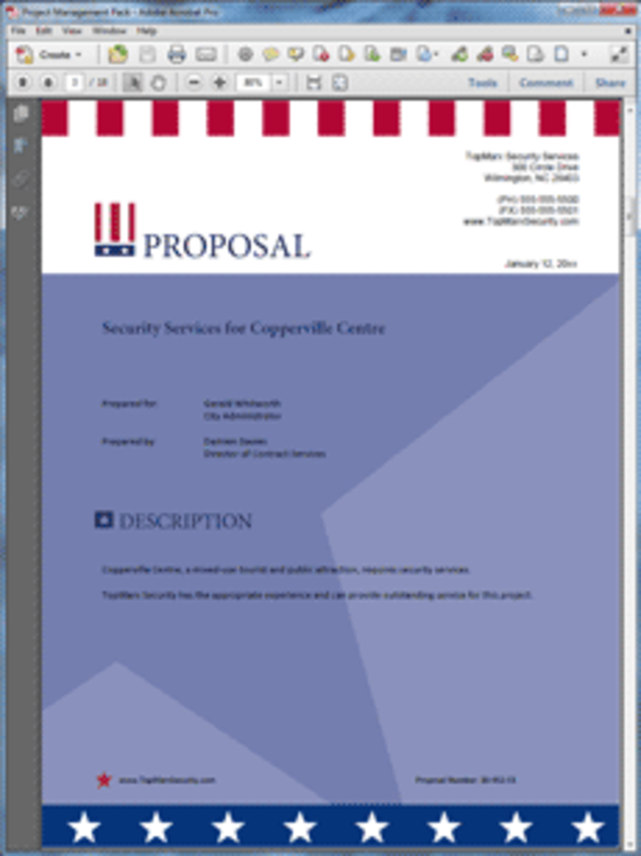 Proposal Pack Flag Design Theme