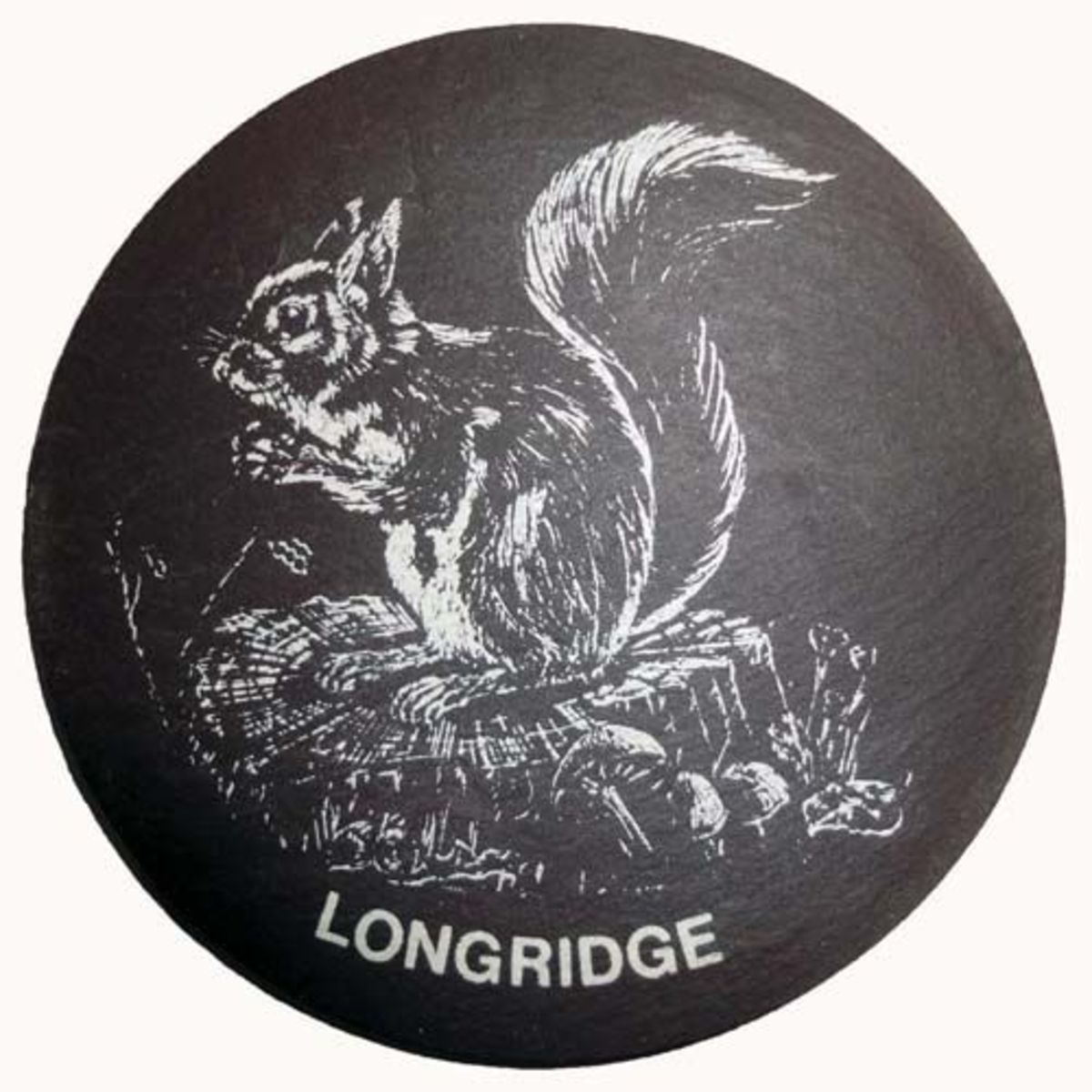Slate coaster of Squirrel in Longridge, Lancashire, England.