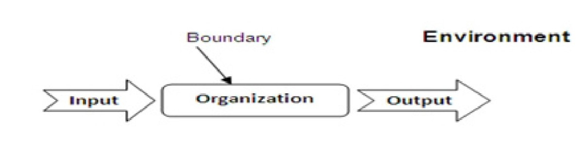 The Nature and structure of organizations