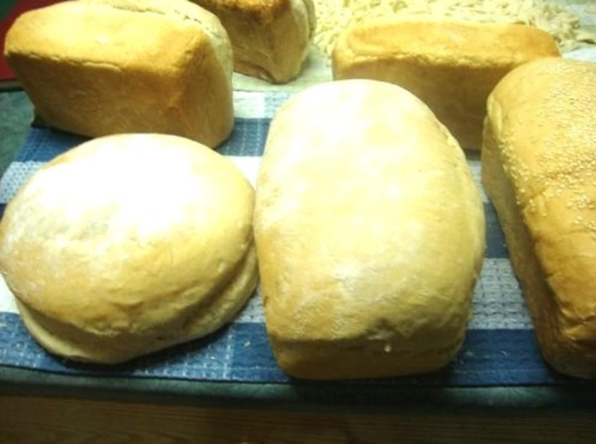 Hearty Homemade Bread - Recipe for 6-8 Loaves