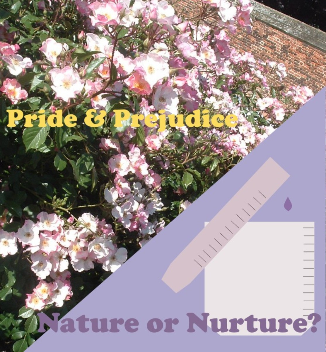 The Themes of Nature and Nurture in Pride & Prejudice