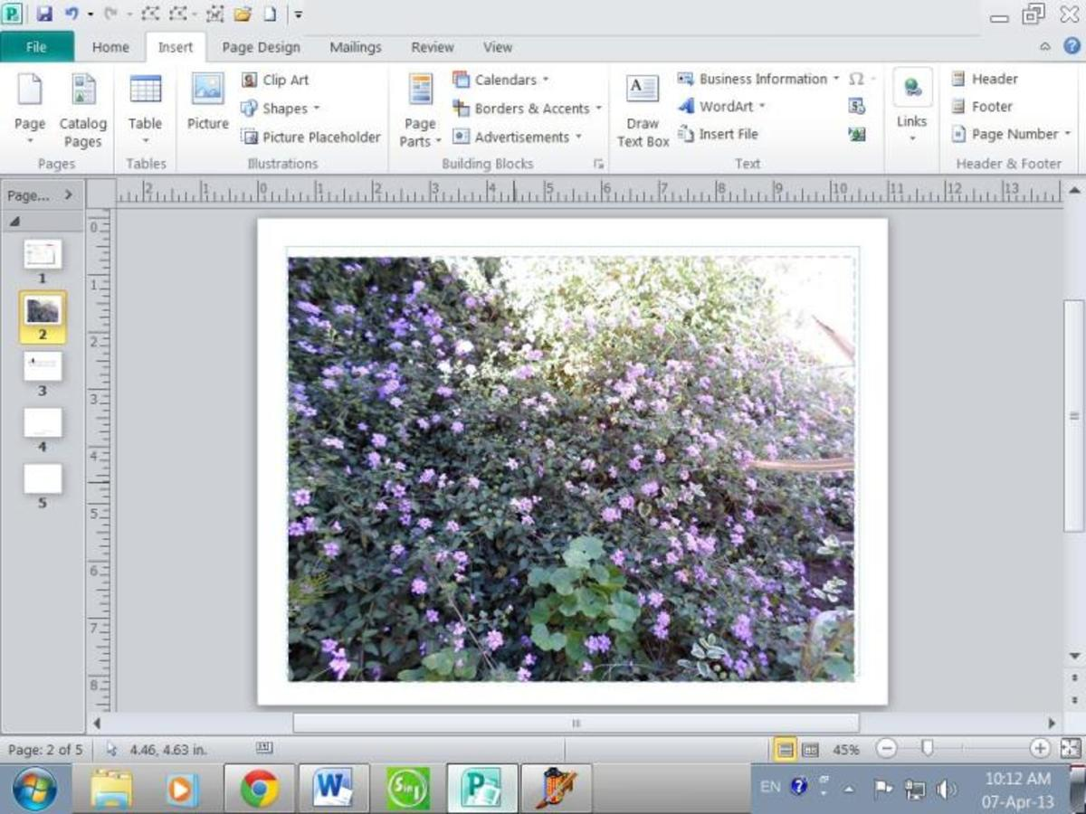 how-to-get-text-on-a-picture-with-microsoft-publisher