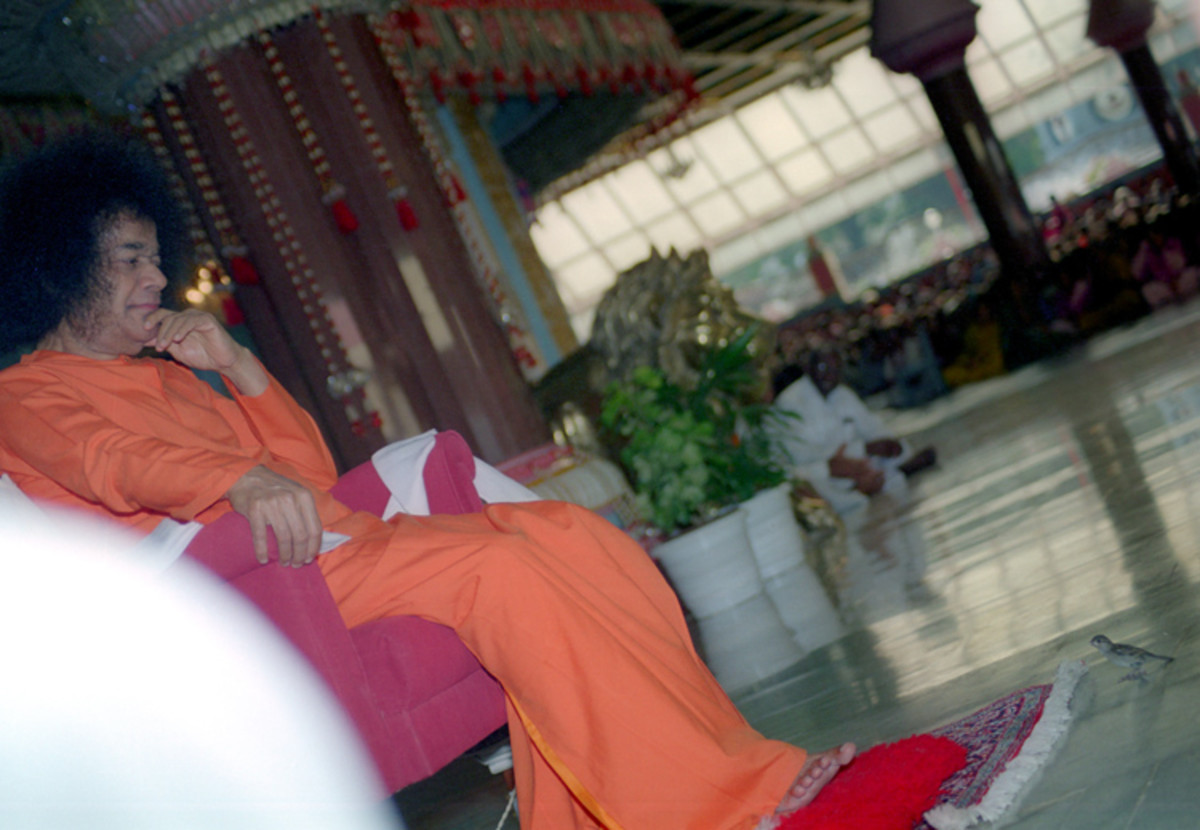 A rare photograph which I captured one afternoon in 1999 when a sparrow and Swami kept looking at each other! :)