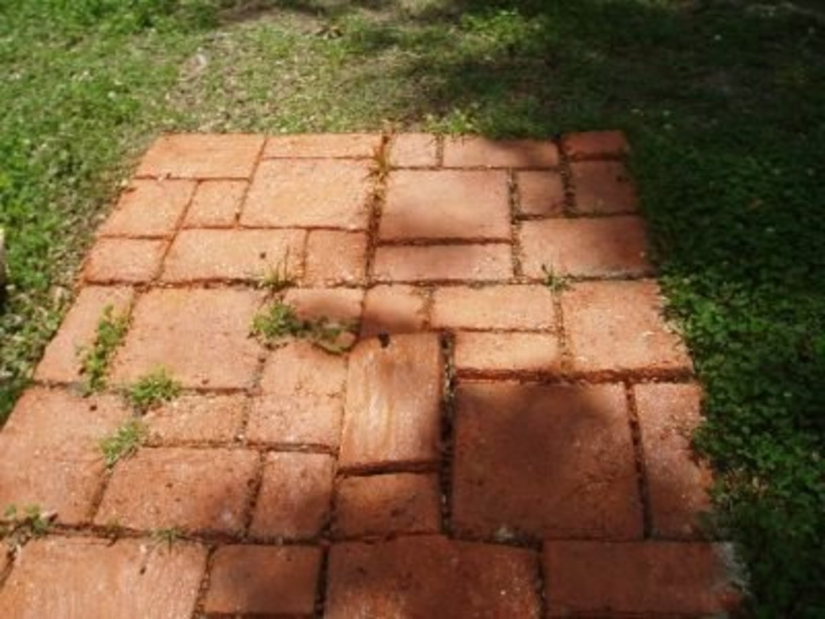 My walkway sprayed painted terra cotta, spritzed with black paint and sealed with clear concrete sealer