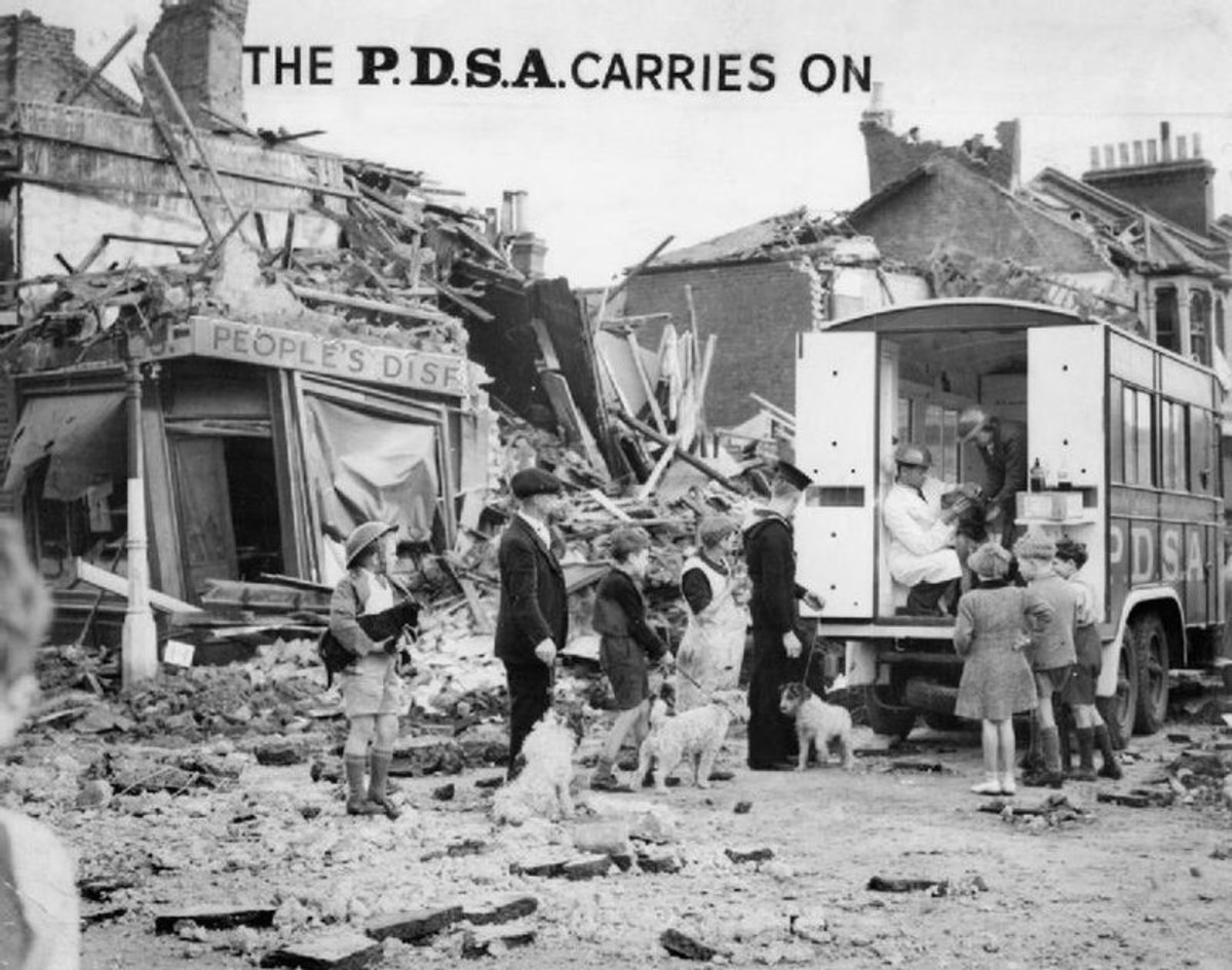 Not forgetting the animals during all the horror and death. A mobile PDSA unit