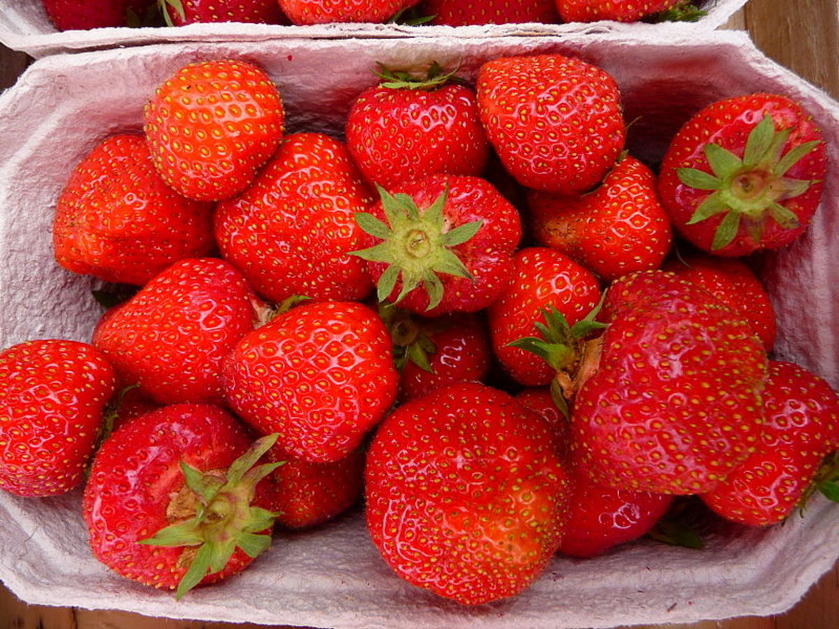 How Strawberry Extract and Infusion Nourish the Skin
