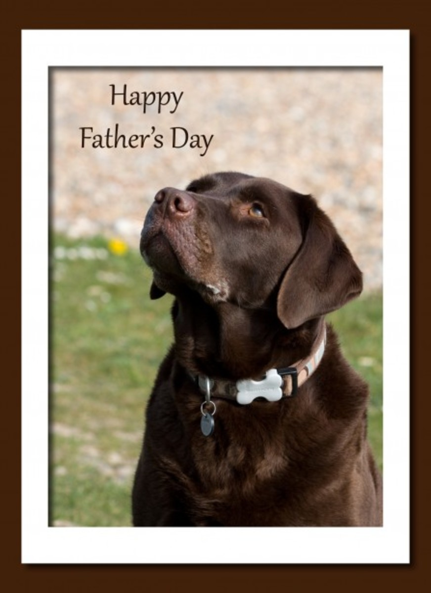 Happy Father's Day Card with Dog