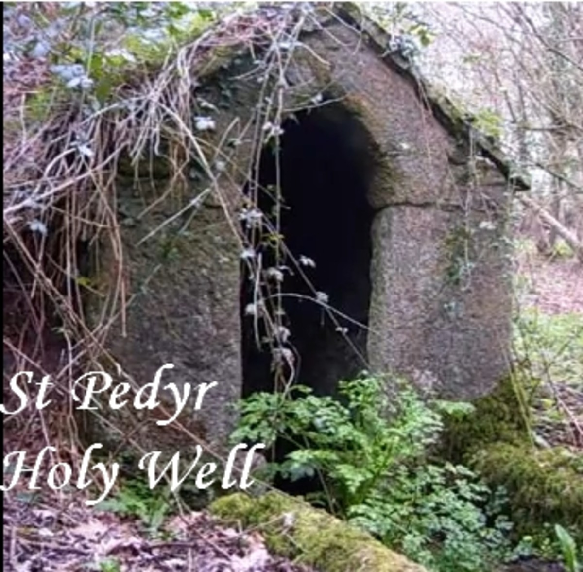 Holy Wells of Newquay, Cornwall: Treloy Holy Well (St Pedyr's Well)