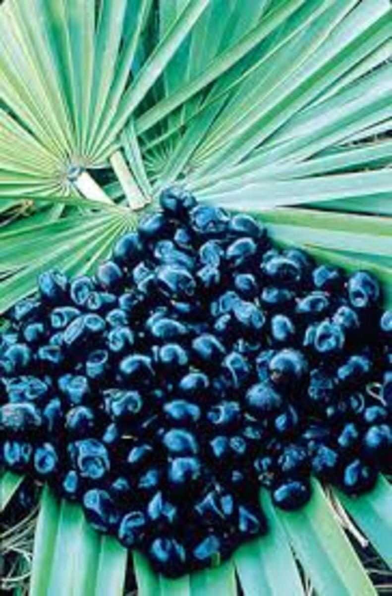 Saw Palmetto work very well at decreasing prostate inflammation .Sometime use alone or in-conjunction with other herbs.