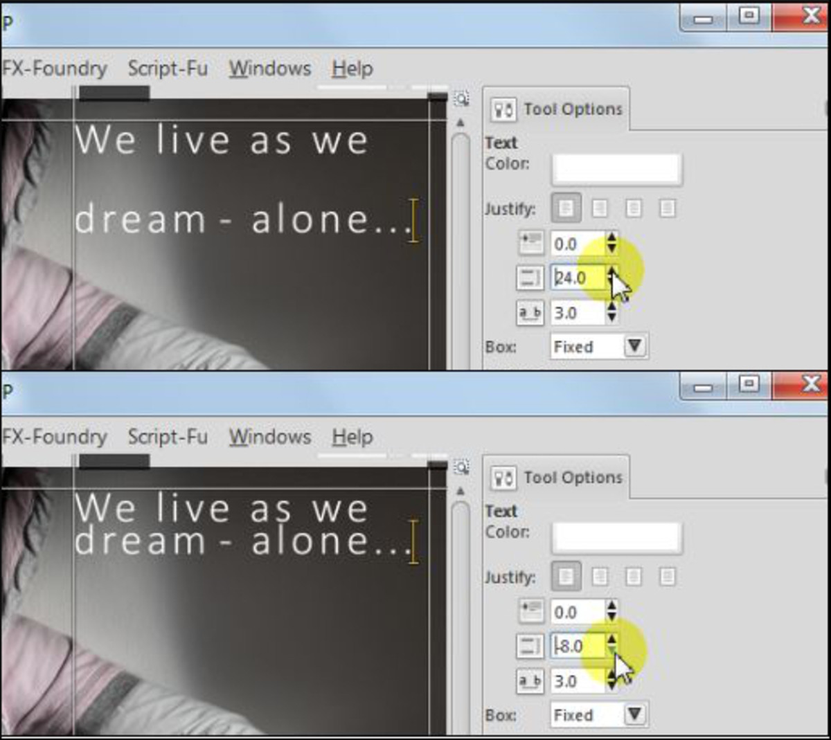 Fig. 4  Add a text to a photo in GIMP 2.8
