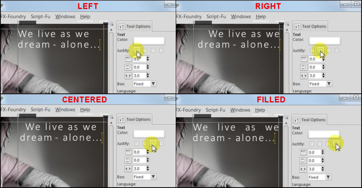 Fig. 3  Add a text to a photo in GIMP 2.8
