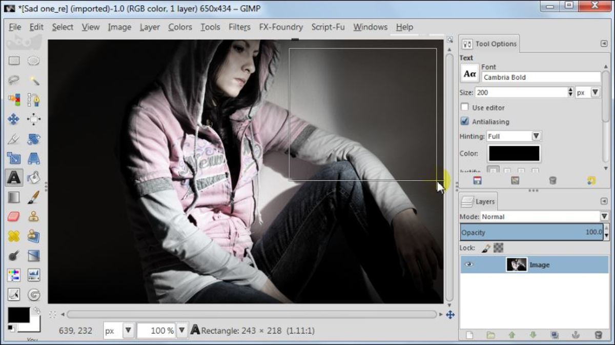 Fig. 1  Add a text to a photo in GIMP 2.8