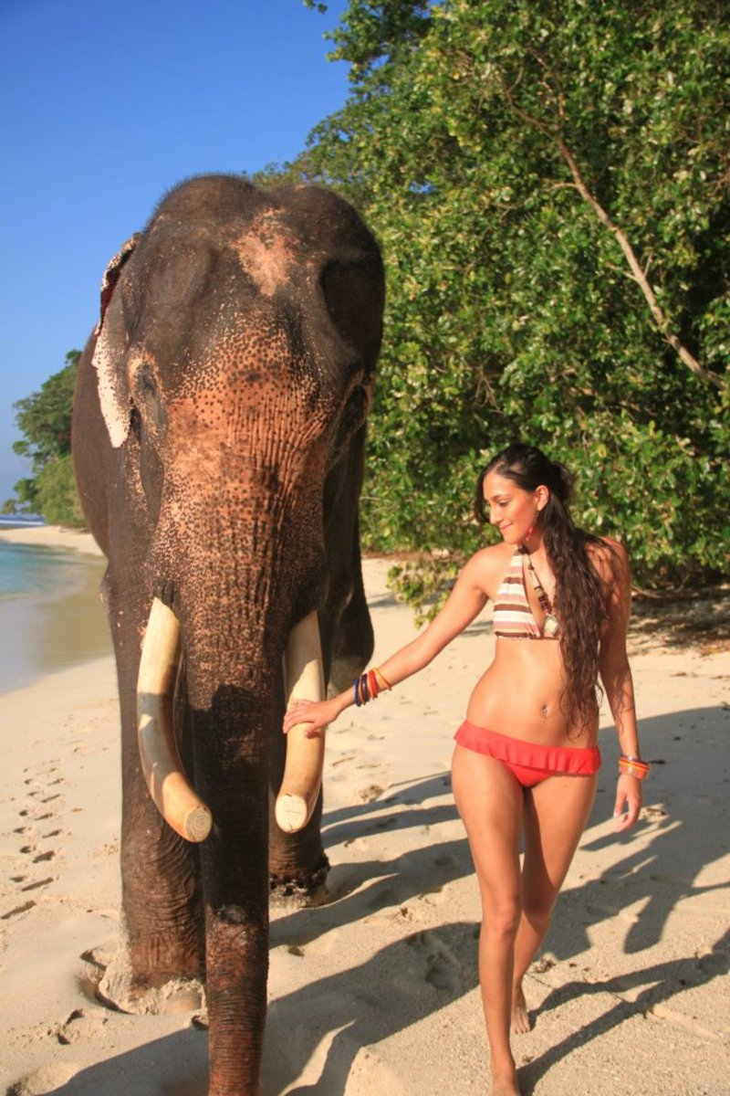 Karuna Ezara Parikh with Elephant