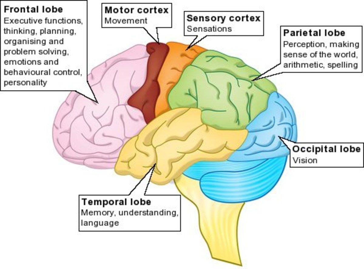 anger-and-traumatic-brain-injury