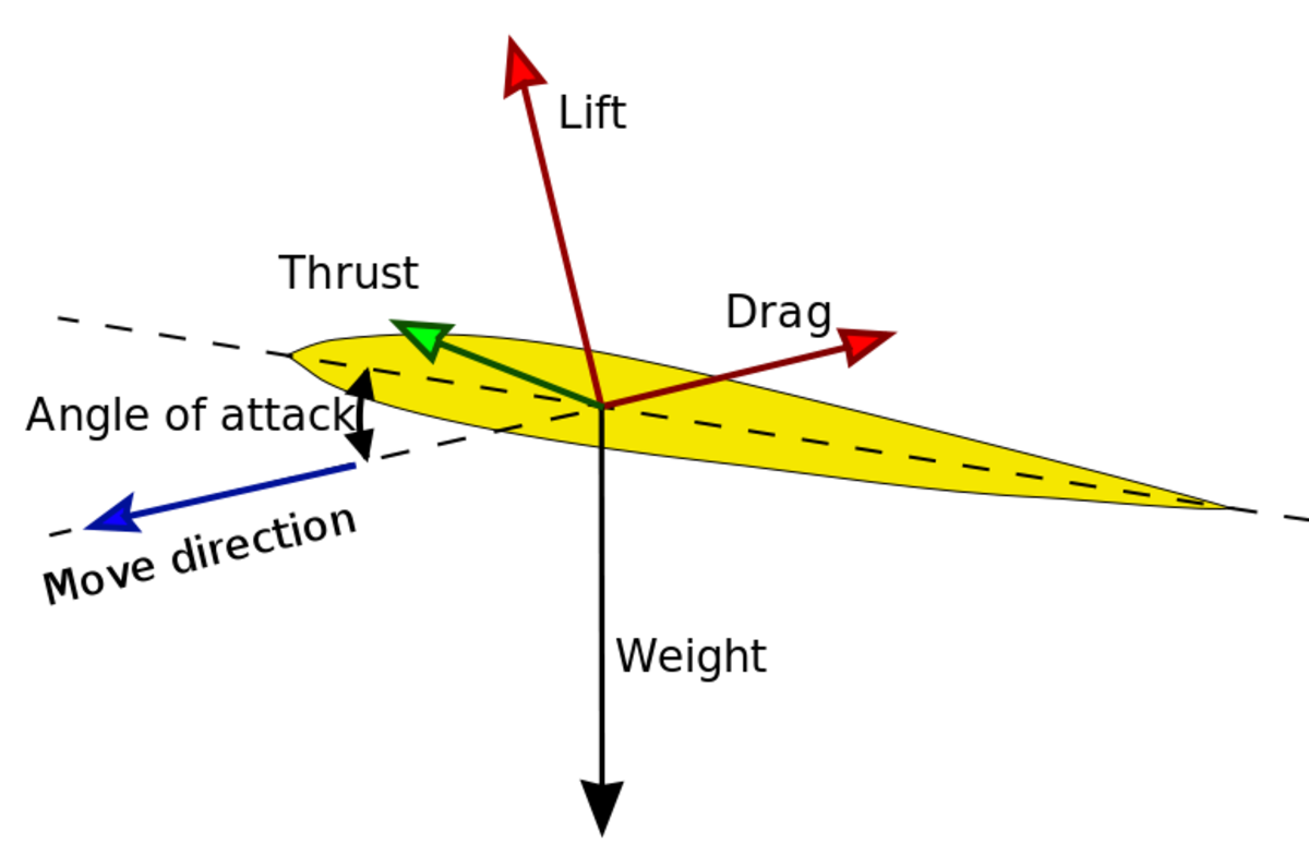 A diagram showing how a bird generates lift. The lift itself is created by pressures from the air flow over the top of the wing.