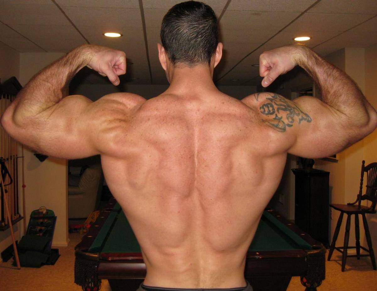 Back Exercises That Help You Build Muscle Fast