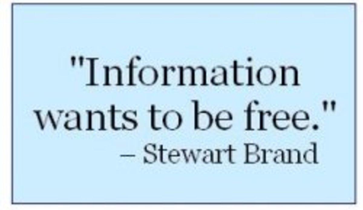 Stewart Brand Internet Quote
