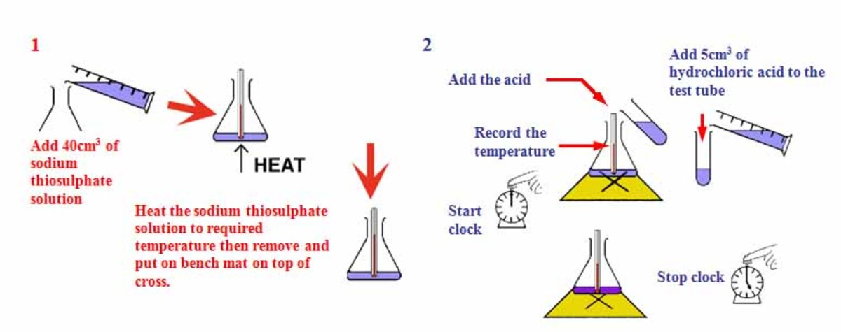 rate of reaction coursework method The effect of temperature on the rate of reaction can be investigated  the  method for this experiment is best understood when the teacher demonstrates it  first.