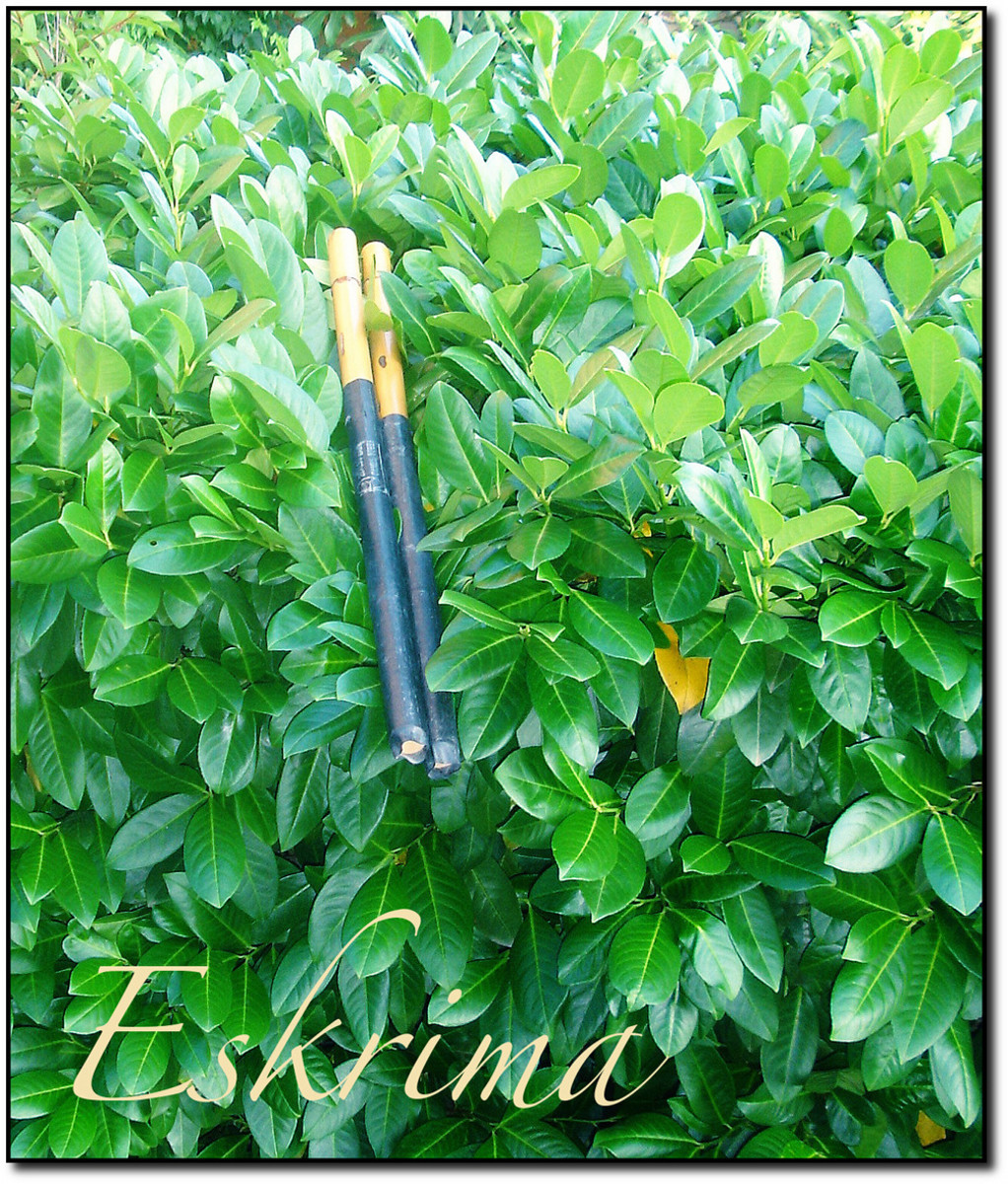 I covered my eskrima sticks with rubber to deaden the sound during training.