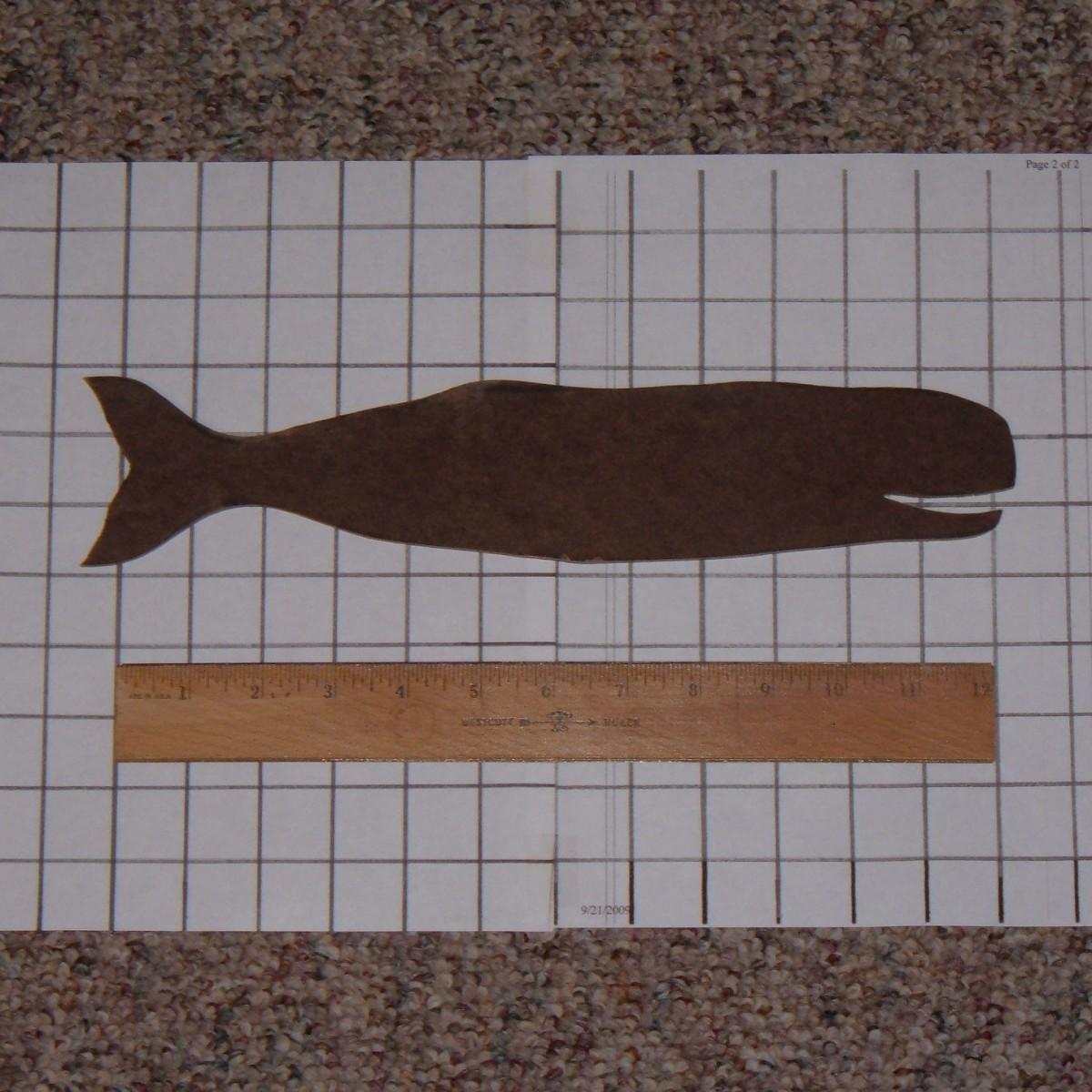 Whale Design Template