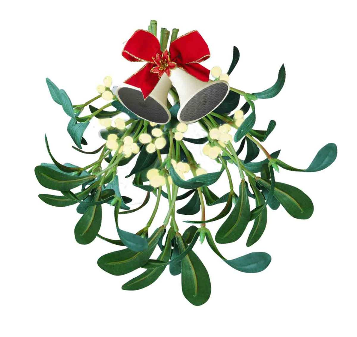 Mistletoe, another pre-Christian favourite for Christmas. How did kissing under the mistletoe get to be associated with a Christian festival?