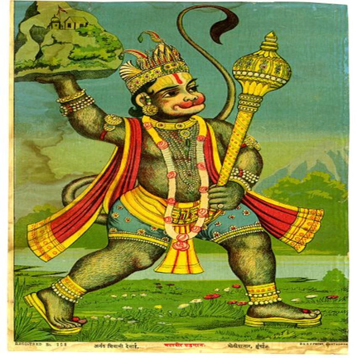 Hanuman fetches herbs
