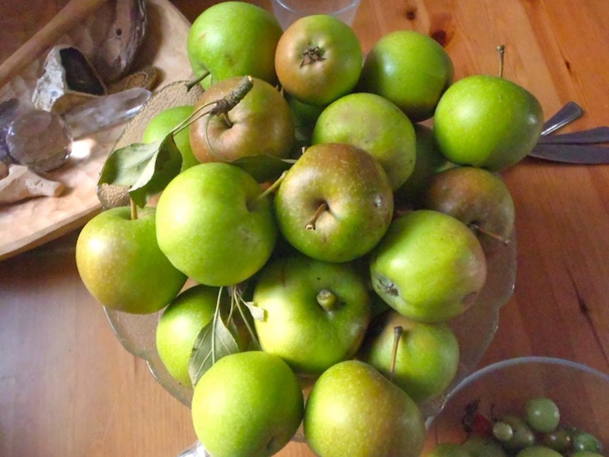 Apples from trees that people don't want.