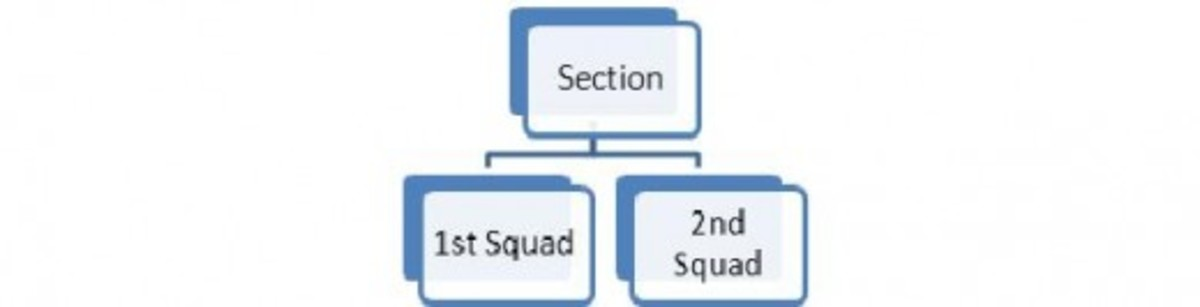 Figure 3: A Section subdivided into two Squads.