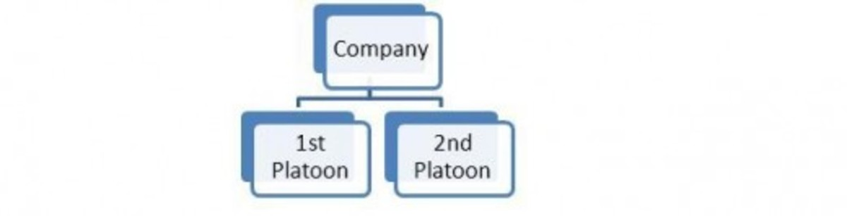 Figure 1: A Company subdivided into two Platoons.